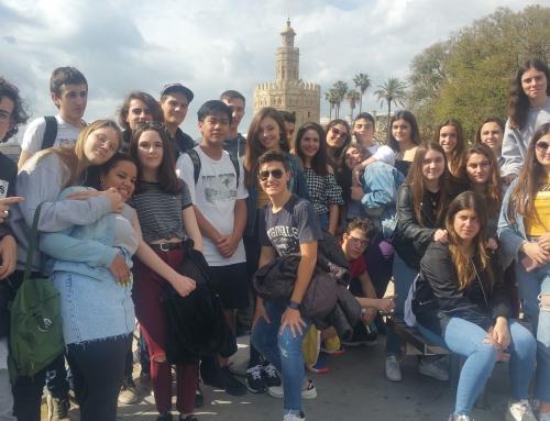 Andalusia, Itàlia i EUA: viatgem arreu!