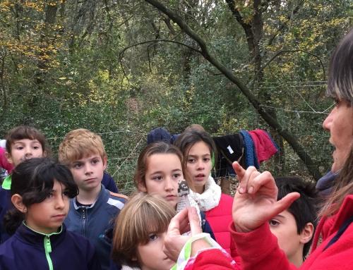 4t visita la Granja Escola de Santa Maria de Palautordera