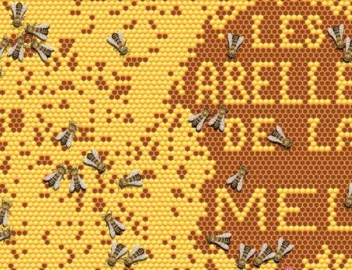 Què els passa a les abelles?