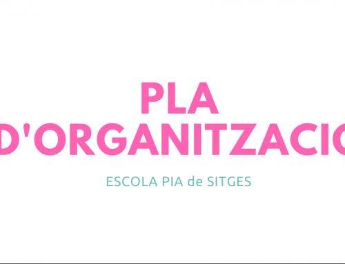 Pla d'organització