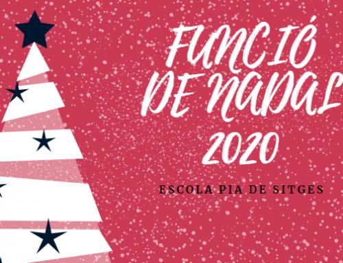 FUNCIÓ DE NADAL 2020